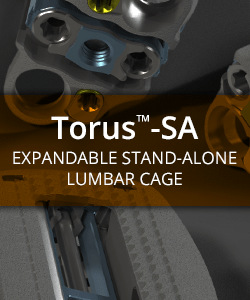 Torus-SA Expandable Stand-Alone Lumbar Cage